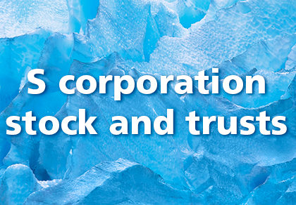 Only certain trusts can own S corporation stock