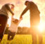 H.R. 6201: Families First Coronavirus Response Act